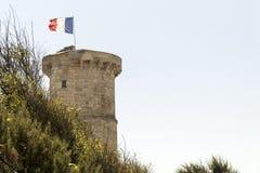 老Phare des Baleines灯塔,法国 库存照片
