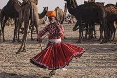 老Rajasthani人跳舞以他的骆驼为背景 图库摄影
