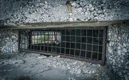 老WW2地堡在克罗地亚 免版税库存图片