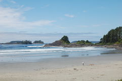 考克斯海湾- Tofino温哥华岛不列颠哥伦比亚省 免版税图库摄影