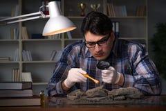 考古学家工作夜间在办公室 免版税图库摄影