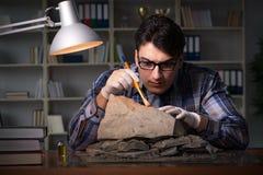考古学家工作夜间在办公室 免版税库存照片