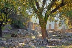 考古学希腊奥林匹亚站点 免版税图库摄影