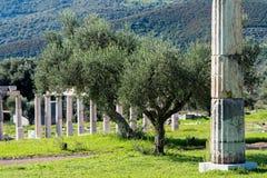 考古学希腊站点 免版税库存照片