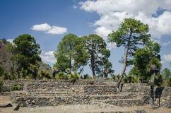 考古学废墟在墨西哥 免版税库存图片