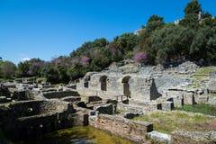 考古学站点在阿尔巴尼亚 库存照片