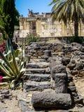 考古学站点Capernaum,家和犹太教堂,加利利海废墟在以色列 免版税图库摄影