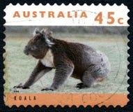考拉澳大利亚邮票 免版税库存照片