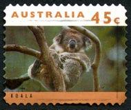 考拉澳大利亚邮票 免版税库存图片
