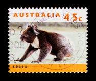 考拉袋熊cinereus,袋鼠和考拉serie,大约1994年 免版税库存图片