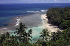 考艾岛海岸线 图库摄影