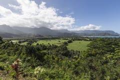 考艾岛视图 库存图片