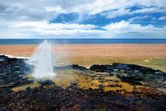 考艾岛,夏威夷的喷出的垫铁 免版税库存照片