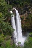 考艾岛wailua瀑布 免版税库存照片