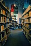读者读书在图书馆里 免版税库存照片