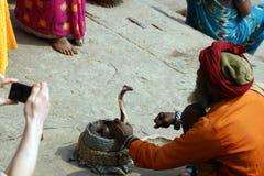 耍蛇者在瓦腊纳西,印度 库存照片