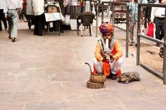 耍蛇者演奏眼镜蛇的长笛坐街道在12月的堡垒琥珀附近 库存图片