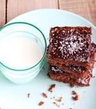 耐嚼的巧克力和椰子切片 库存照片