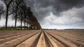 耕犁在播种以后的农业领域 免版税库存照片