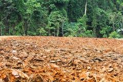 耕种。 免版税图库摄影