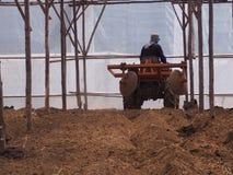 耕种为准备土壤耕作 库存照片
