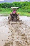 耕种农夫人工泰国米的节省额 免版税库存图片
