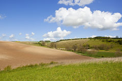 耕种的土壤和草甸 免版税库存照片