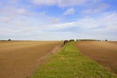 耕种的土壤在秋天 库存照片