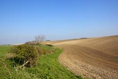 耕种的多白粉土壤 免版税库存照片