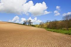耕种的多白粉土壤 免版税库存图片