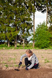 耕种除草妇女年轻人 图库摄影