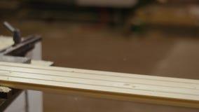 耗尽木匠处理器机器的木委员会在锯木厂工厂 股票录像