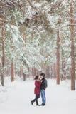 耦合愉快有户外停放冬天年轻人的系列乐趣 户外系列 爱,情人节 免版税库存照片