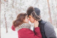 耦合愉快有户外停放冬天年轻人的系列乐趣 户外系列 爱,情人节 库存图片