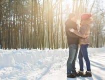 耦合愉快有户外停放冬天年轻人的系列乐趣 户外系列 爱 图库摄影