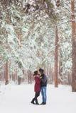 耦合愉快有户外停放冬天年轻人的系列乐趣 库存图片