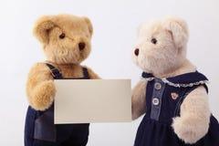 耦合玩具熊 免版税库存照片