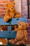 耦合逗人喜爱teddybear 免版税图库摄影