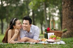 耦合野餐 免版税库存图片