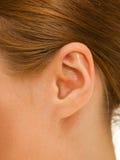 耳朵妇女 库存照片
