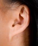 耳朵妇女 免版税库存图片