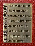 耶利米29:11 免版税库存照片