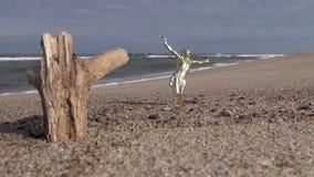 耶稣受难象和木注册海滩 股票录像