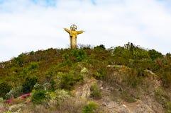 耶稣基督雕象Nui Lon大山的 头顿,越南 库存照片