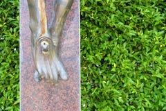 耶稣雕象的腿与绿色的离开墙壁背景 免版税库存照片