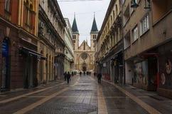 耶稣` s神圣的心脏大教堂,萨拉热窝 免版税库存图片