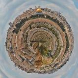 耶路撒冷小行星 免版税库存图片