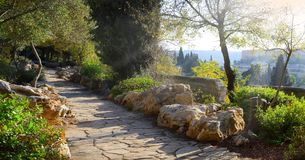 耶路撒冷看法从橄榄山的 库存图片