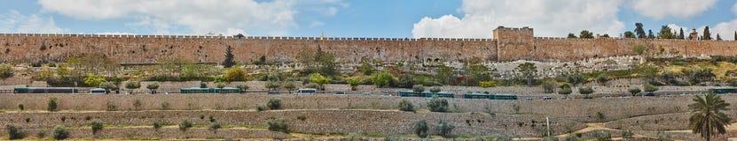 耶路撒冷老市全景  库存照片
