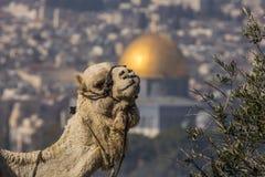 耶路撒冷 免版税图库摄影